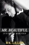 Cover Reveal and Excerpt: Mr. Beautiful (Up in the Air #4) by R.K. Lilley