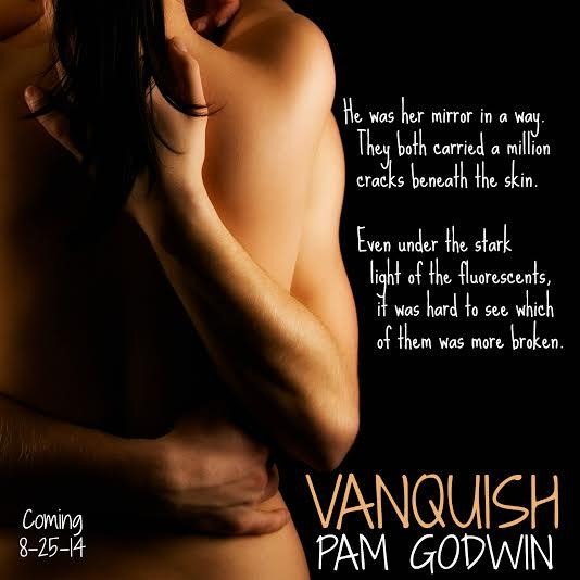 Vanquish teaser 4