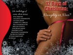 COVER REVEAL: 12 DAYS OF CHRISTMAS Anthology